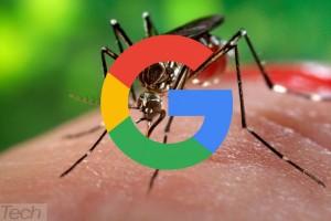 Combate ao vírus Zika conta com 1 milhão de dólares da Google