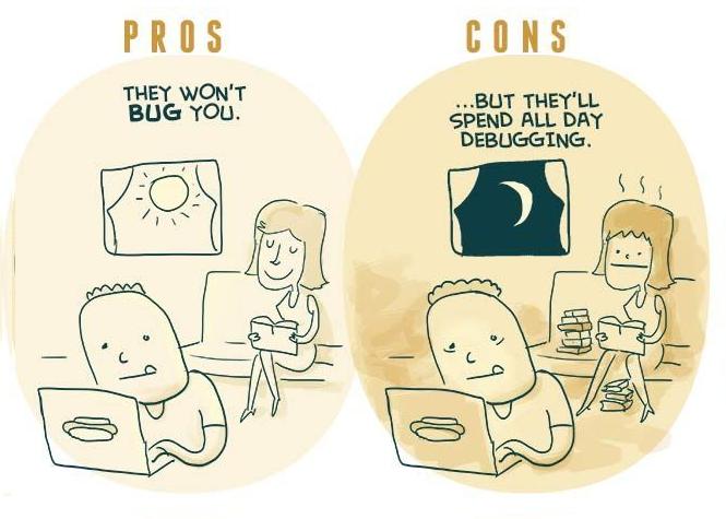 Programmer5