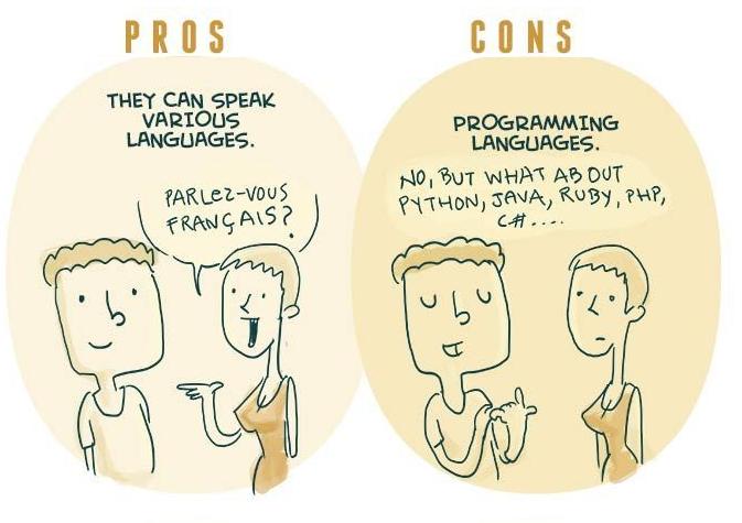 Programmer7