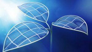 Folha Biónica converte água e luz em combústivel