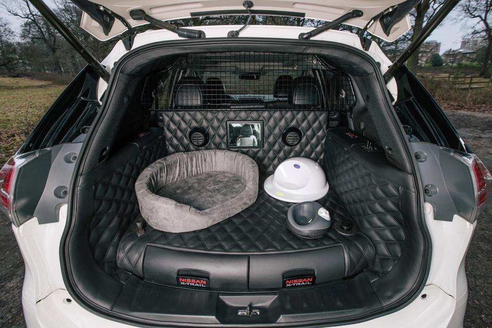 Primeiro carro a pensar nos cães é um LUXO