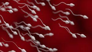 Teste de fertilidade masculina via smartphone são uma realidade