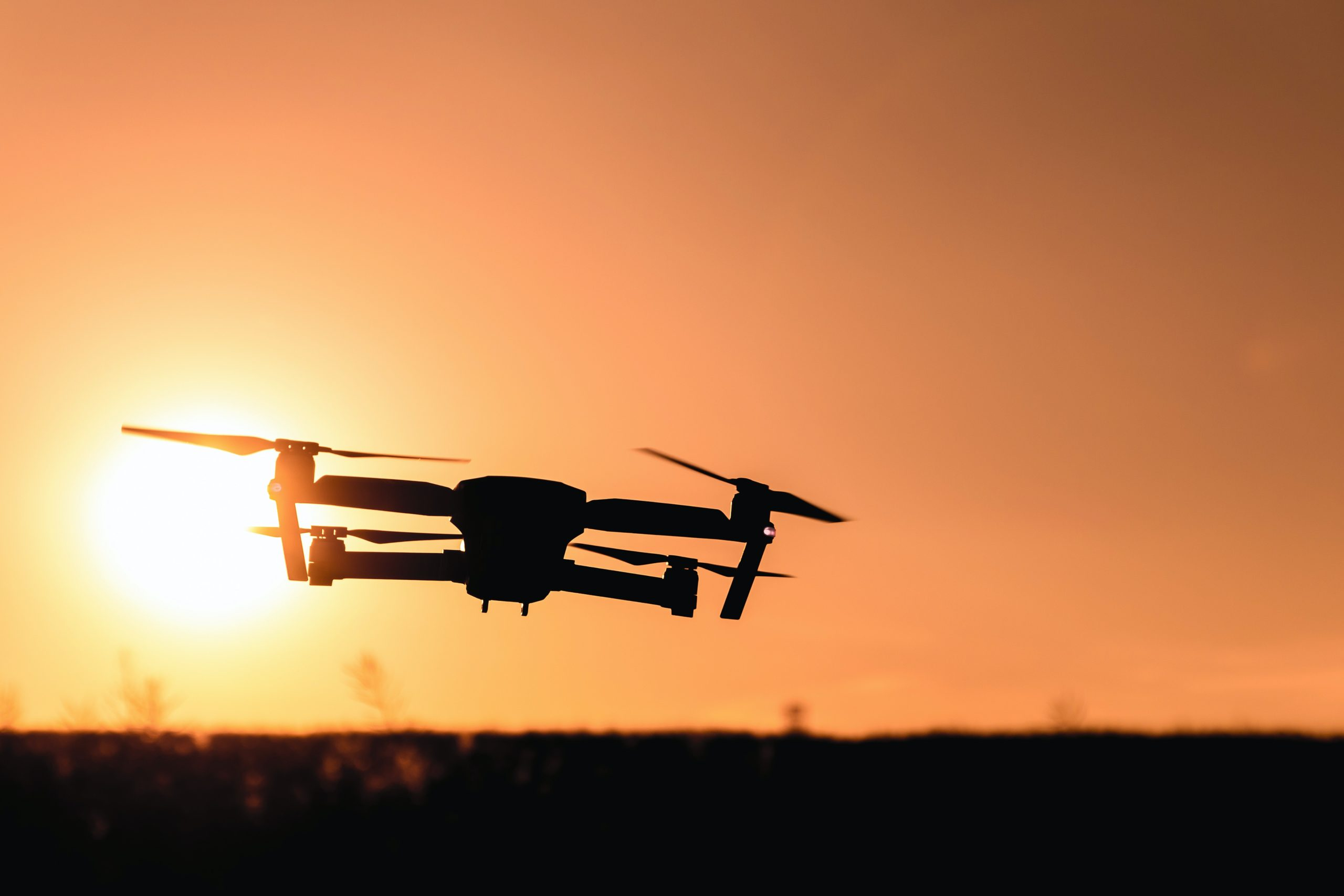Drones monitorizam a vida selvagem na Austrália
